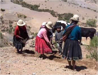 Bolivia tillage